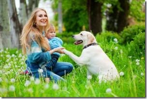 Pets benefit the lives of their owners, both psychologically and physically, new research shows. (Credit: © Alena Ozerova / Fotolia)