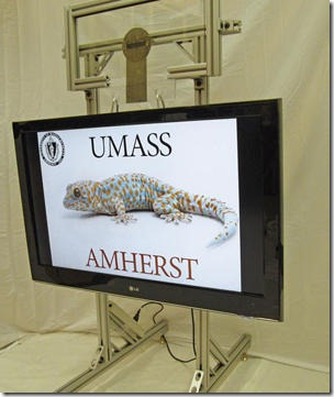A card-sized pad of Geckskin can this 42-inch television weighing about 40 lbs. (18 kg) to a smooth vertical surface. (Credit: Photo courtesy of UMass Amherst)